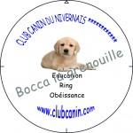 autre-chien-modifiable-lab-150x150